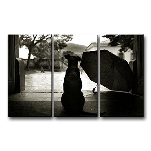 3Stück schwarz und weiß Wand Kunst Bild Hund mit Regenschirm in Yard Prints auf Leinwand Das Tier Bilder Öl für Home Moderne Dekoration Print Decor