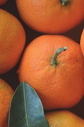 Satsuma Mandarin Oranges Journal: 150 page lined notebook/diary -