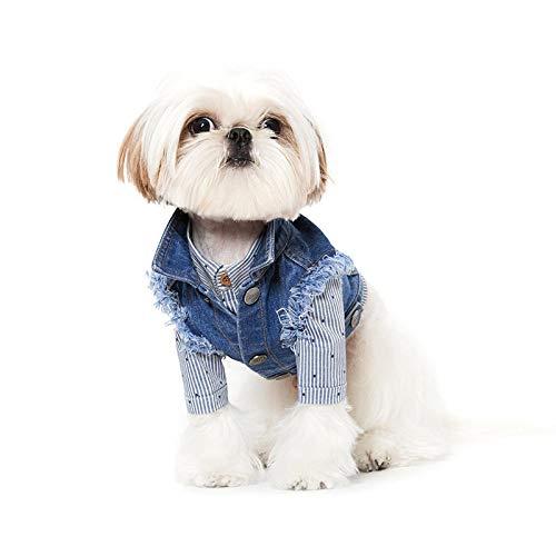 Doppel Kostüm Denim - L Pet supplies Sniff@ Royal Blue Denim Hunde-Teddy-Kleidung, Koreanisches Haustierkostüm, Größe XXL