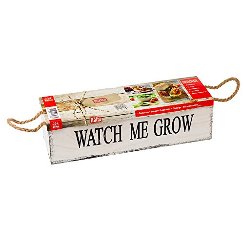 geschenkartikel-shopping Watch me grow Italia Pflanz-Set Samen Saatgut Garten Kräutersamen Pflanzerde Holzkiste