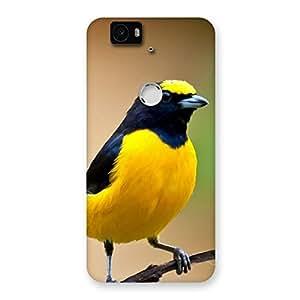 Cute Sweet Bird Back Case Cover for Google Nexus-6P