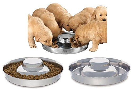 King International 100 % Stainless Steel Dog Bowl | 1 Puppy Litter Food Feeding Weaning 29 cm | Silver Stainless Dog Bowl Dish | 29 cm diameter 41ZWtl3KnCL