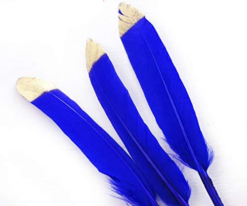 6x Royal Blau Gold Top Gefärbte Gänsefedern Anhänger Ohrringe Schmuck Kostüm Lose Satinettes ()