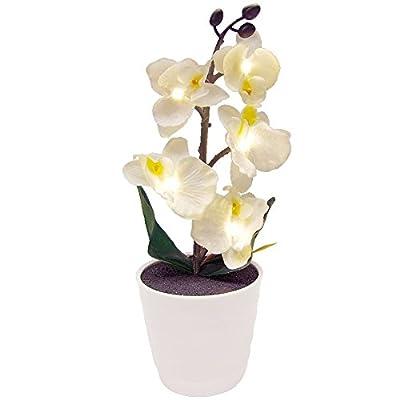 LED Beleuchtung Künstliche Orchidee im Blumentopf Kunstpflanzen Frühlingsdeko von 1a-handelsagentur - Du und dein Garten