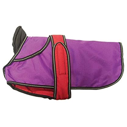 Danish Design 2-In-1 Light Reflective Coat, Purple, 40 cm/16-Inch 5