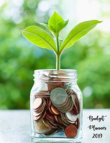 Budget Planner 2019: 12 Month Budget Planner Book, Budget Organizer Journal Notebook Finance Planner, Money Organizer, Debt Tracker