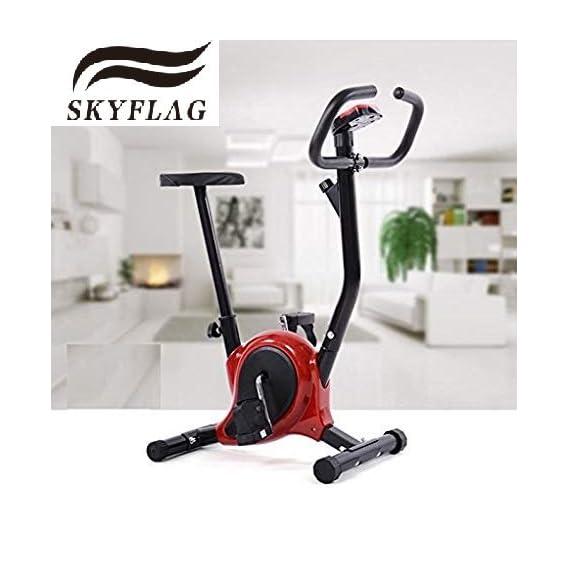 SkyFlag Exercise Bike with Cardio