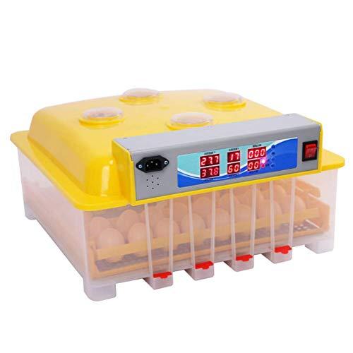 FOTEE Brutkasten für hühner, intelligent mit LED Temperaturanzeige Brutkasten, Vollautomatische Flächenbrüter für Hühner Enten Gänse Vögel,Yellow_36 Eggs