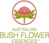 Abund essence 30 ml Bush flower