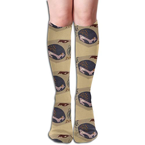 Stocking Animal Fables I Dog And Bird Multi Colorful Patterned Knee High Socks 19.6Inchs ()