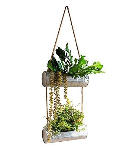 Im freien kraut blumen pflanze steht eisen eimer dekorative blumentöpfe eisen hängende korb blume wand