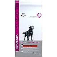 Eukanuba Premium Hundefutter für Labrador Retriever, Trockenfutter mit Huhn (1 x 12 kg)