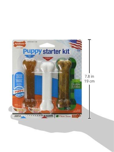 Nylabone Puppy Starter Kit 5