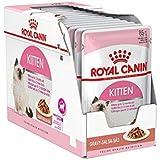 Royal Canin Kitten Gravy-Salsa-Sas Instinctive pack, 12 x 85g