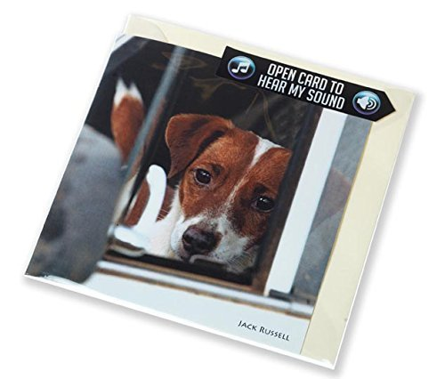 jack-russell-greeting-card-with-sound-inside-plays-authentic-yapping-noise-when-opened-perfect-gift-