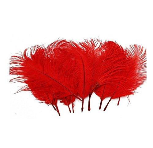 Arpoador Qualität Straußenfeder Stage Kostüm Design Material Weich 50, Red 10-15cm, 1 (Red Xiii Kostüm)