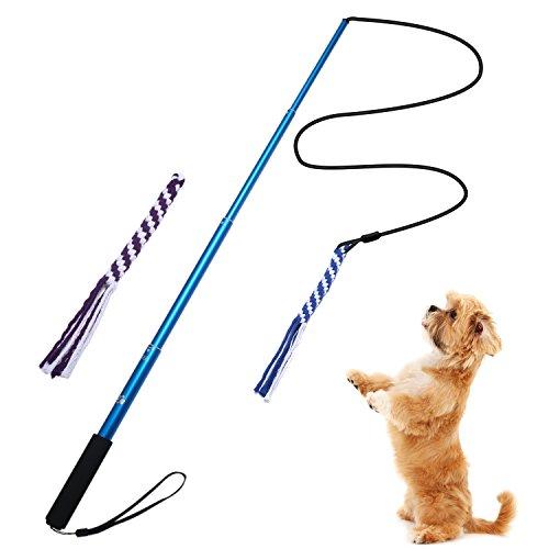 Ang ausziehbar Flirt Pole Tauspielzeug für Hunde, mit 2widerstandsfähigen geflochtenen Baumwoll-Mischgewebe Seil, Outdoor Interaktives Hundespielzeug für Ziehen, Jagen, Kauen, Training, excercing (L)