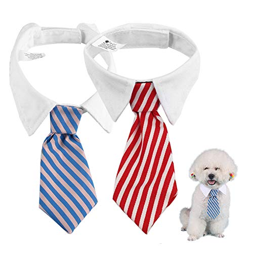 KEISL 2 x Hundekrawatte mit Schleifen für das Haar von Haustieren Krawatten für Haustiere Kostüm (Blauer Asche + rot und - Asche Kostüm