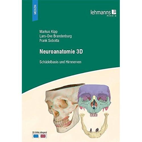 PDF] Neuroanatomie 3D: Schádelbasis und Hirnnerven (mit 3D-Brille ...
