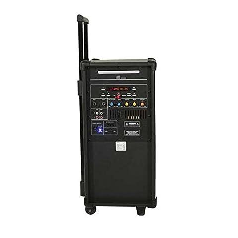Ibiza aktive PA-Anlage (CD/MP3 Player, 2-Wege-System, USB)