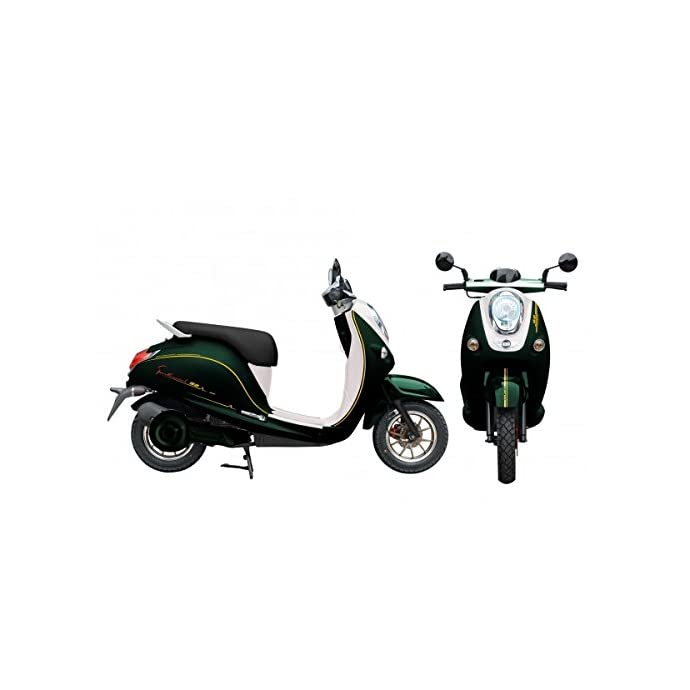 ZTech Malibu 60 V Electric Scooter, Electric Scooter, Moped