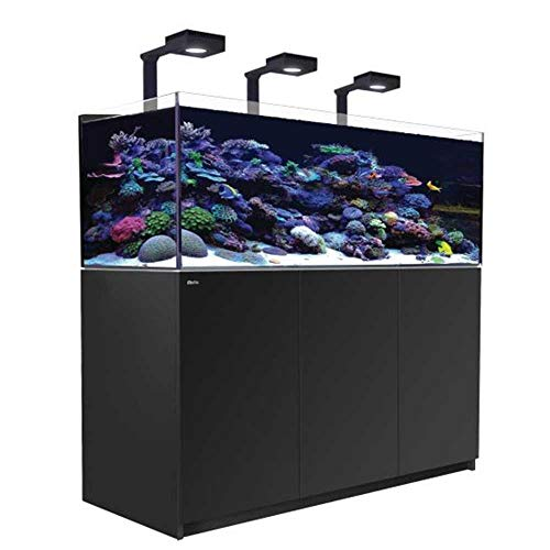 Red Sea Reefer(TM) Deluxe XL - 525 - schwarz