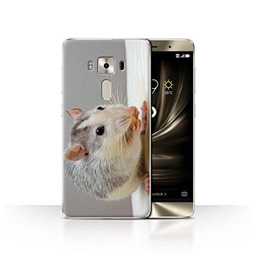 Stuff4® Hülle/Case für Asus Zenfone 3 Deluxe ZS570KL / Hausratte/Ratte Muster/Niedlich Haustiere Kollektion -