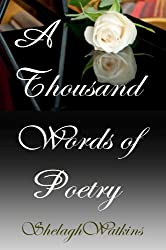 A Thousand Words of Poetry (English Edition)