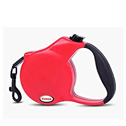 Generic Blue, 5M Flat Belt : Retractable Dog Leash Lead Nylon+ ABS Pet Cat Puppy Leashes Automatic Retractable Walking Traction Belt Small Medium Pet 3M 5M