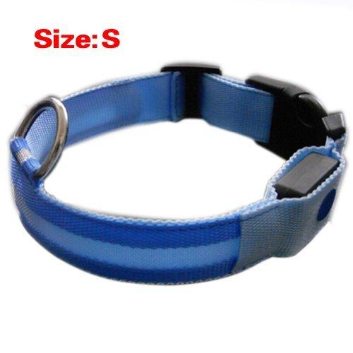 A-goo NEUF Bleu en nylon pour chien LED Collier de sécurité de nuit clignotant Light Up W/circulaire Pendentif Collier Taille S : 35–43 cm Largeur : 2.5 cm