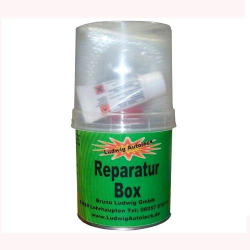 250g Reparatur Box Glasfasermatte und Harz mit Härter