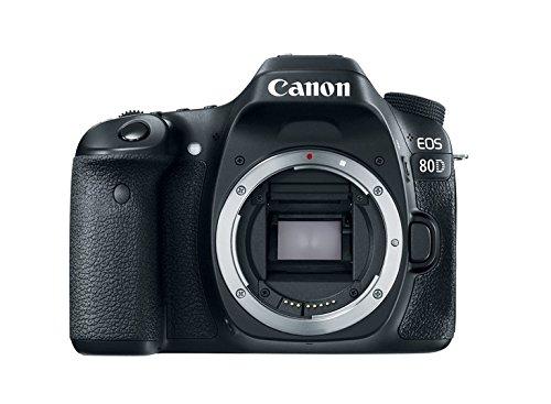 las 5 Mejores Cámaras Reflex Canon