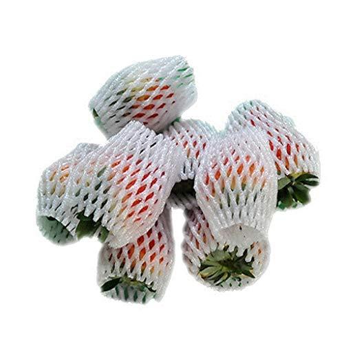 Fruit5188 Erdbeertarte Net Obstschaum Ei Express Net Set Stoßfest Schaum Verpackung Obst Net 5 * 7 cm (1000) (größe : 5 * 7cm (1000))