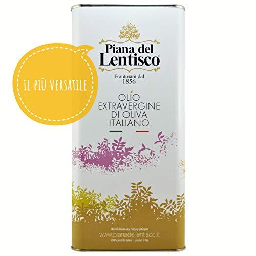 5 litri - olio extravergine d'oliva basiliano 100% italiano - blend con ottimo fruttato e gusto bilanciato