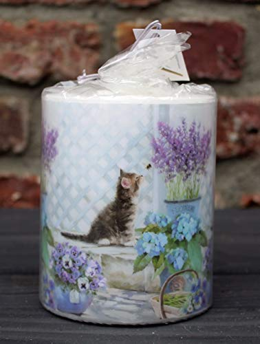 Unbekannt Kerze Neugieriges Kätzchen -