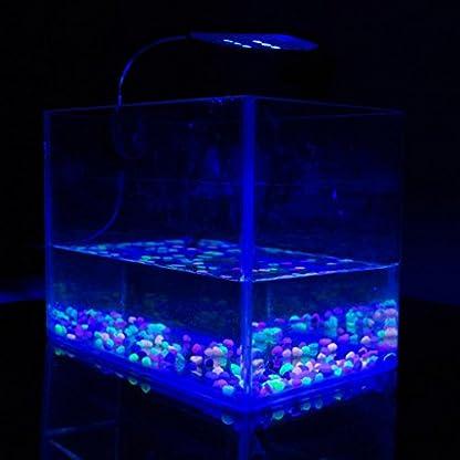 Kasstino 24 LED/48LED Highlighting Aquarium Light Fish Turtle Tank Light Clip Light Lamp (48LEDs) 5