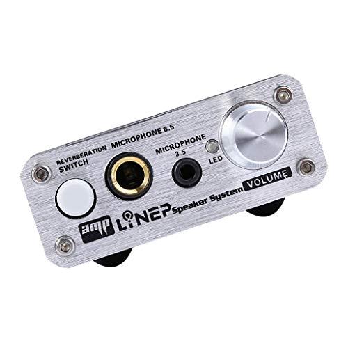 P Prettyia HiFi 2Kanal Mikrofon Vorverstärker Vorverstärker Audio E-Gitarre Bass Verstärker
