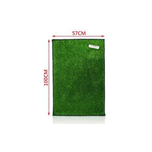 Rasenteppich Kunstrasen Premium hellgrau 400x280 cm