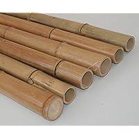 Suchergebnis Auf Amazon De Fur Bambusstangen Baumarkt