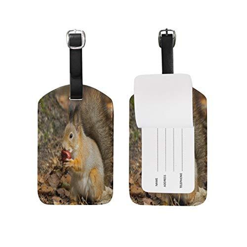 89tAGS4077 Gepäckanhänger mit Eichhörnchen-Motiv, 1 Stück