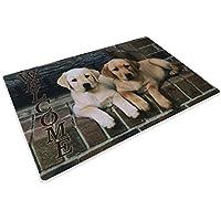 Alfombra Felpudo Digital Friends cm.40x 60perro perros Labrador