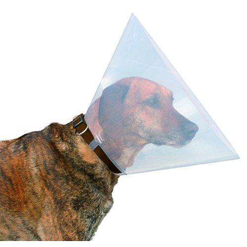 Beeztees 796002 Hundekragen aus Plastik, 28-33 x 12,5 cm