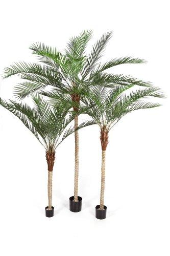 artplants Künstliche Phönix-Palme mit hellem Stamm, 210 cm – Kunst Palme/Dekopalme