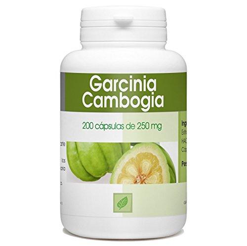 La Garcinia cambogia (Garcinia gummi-gutta) es una especie subtropical de plantas de la familia Clusiaceae nativa de Indonesia, en particular la región de la Garcinia.