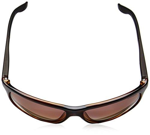 Carrera - Lunette de soleil 8001 Rectangulaire  - Homme HVN BROWN