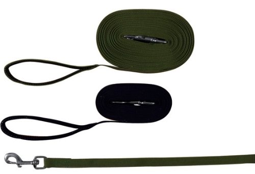 Trixie 19914 Schleppleine, Gurtband 10 m/20 mm, grün