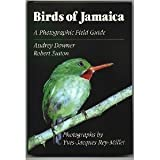 Birds of Jamaica: A Photographic Field Guide First edition by Downer, Audrey, Sutton, Robert L., Rey-Millet, Yves-Jacques (1990) Hardcover