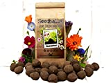 Die Seedball-Manufaktur Seedball Baukasten zum Selberrollen, Natur mit magentafarbener Schleife