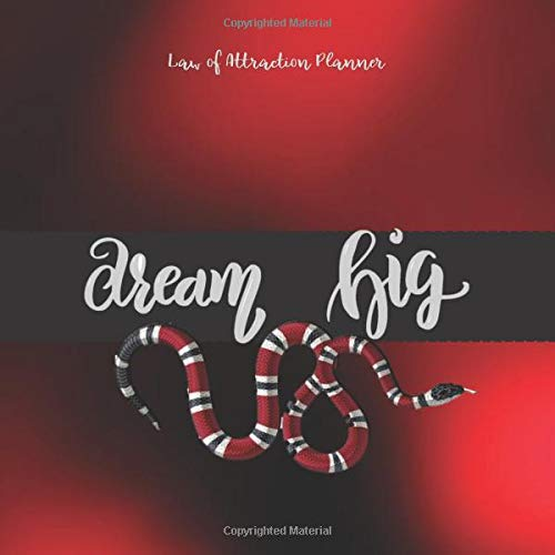 DREAM BIG Law of attraction planner: Vision Board book  & Goal Getter - Red & Black Large Activity Book (200 pages 8.5 x 8.5) Productivity Journal