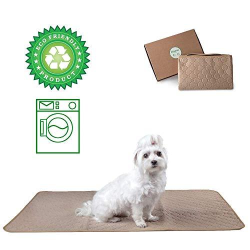DISANE Absorbierende Schutzmatte für Hunde und Katzen, waschbar und wiederverwendbar 67x100cm BEIGE | Toilettentraining für Welpen | Inkontinenz bei betagten Haustieren